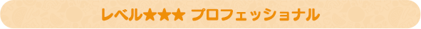 レベル★★★ プロフェッショナル